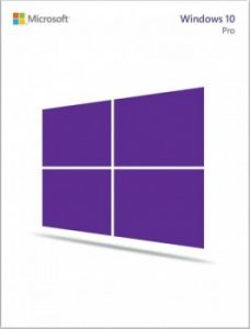Microsoft Windows 10 Pro - 64 bit Operating System